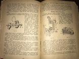 1936 Що треба знати Шоферові, фото №6