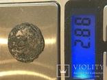 Сребреник Владимира., фото №6