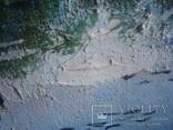 """Картина """"Речной пейзаж"""" холст,масло 42,5/29,5см., фото №4"""