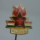 Значок Венгрия Еlore. Пионерия, фото №2