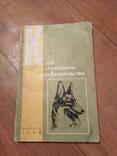 Клуб служебного собаководства., фото №2