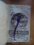 Шеллер Михайлов 1904 Полный комплект! 16 томов, фото №13