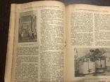 1947 Торговля Общественное питание, фото №7