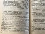 1948 Еврейский сладости Кондитерка, фото №10