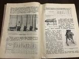 1925 Механизация Общественных столовых, фото №6