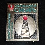 Знак из набора делегату 19 съезда ВЛКСМ комсомольская стройка Западная сибирь, фото №2
