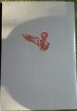 Украïнськi iкони Спас у Славi. 2005г., фото №8