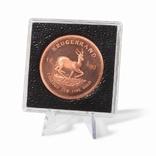 Держатель для монет, монетных капсул, медалей 38*29 мм, 360896
