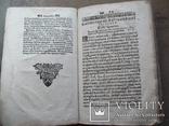 Триодь 1688 г. (Стародрук), фото №8