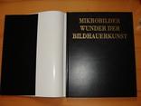 Mikrobilder. Wunder der Bildhauerkunst. Микрофотографии. Чудо-скульптура., фото №3