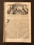 1854 Детские сказки Непонятная робость Шекспир, фото №3