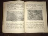 1932 Мех из болота Ондатра, фото №7