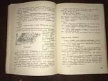 1932 Мех из болота Ондатра, фото №9
