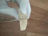 Клык моржа пластинка 0,43 кг, фото №4