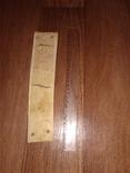 Клык моржа пластинка 0,43 кг, фото №5