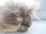 Ежик из меха енота 15смХ12см (р-р с мехом)., фото №5