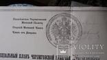 Геометрический специальный план Черниговской губернии, Козелецкого уезда, фото №5
