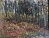 """Картина И.К. Цюпка """"Осенний лес"""" 1959г., фото №5"""