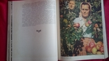 Книга Сільське Господарство Радянської України 1957р тир15000., фото №9