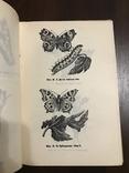 1940 Шкідники та хвороби Хмелю, фото №13