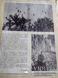 2 альбома вырезок из прессы второй половины 1980-х годов, фото №8