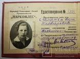 Удостоверение Наркомлес С.С.С.Р. 1935 г., фото №4