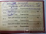 Удостоверение Наркомлес С.С.С.Р. 1935 г., фото №5