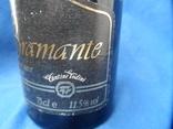 Vino Spumante di Qualita BRAMANTE 0.75L 11.5gr фото 5