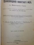 Происхождение  животнаго мира  Д-ра  Вильгельма Гааке  1903 года, фото №4