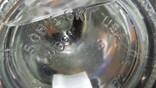 Bruce Willis Vodka  Sobieski, фото №9