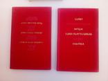 Слово о полку Игореве 2 книги, фото №8