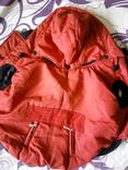 Одежда для собак, фото №2