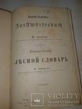 1889 Лесной словарь, фото №2