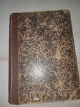 1889 Лесной словарь, фото №10
