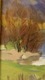 Сапатюк М. раз. 60 х 85 см., х.м., Засл.худ.Украины., фото №9