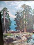 Картина на полотне 2. Копия., фото №2