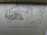 """""""Типовые статьи о памятниках истории,археологии,градостроительства..."""" 1985 год, фото №9"""