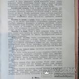 1913 - 100 кушаний из остатков, фото №5