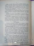 1913 - 100 кушаний из остатков, фото №6
