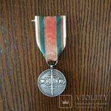 "Медаль ""Защитнику народной власти"" (манифест), фото №2"