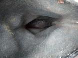 Сапоги кирзовые, фото №7