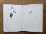 Философские сказки 1912 г. С иллюстрациями, фото №13
