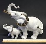 Слониха и слоненок, фото №11