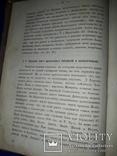 1873 Обозрение пророческих книг, фото №7