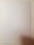 Карточка-фотокопия Ню, фото №3