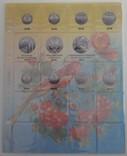 Альбом-каталог для разменных монет Украины с 1992г. (синий), фото №6