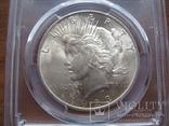 Серебряный Мирный доллар 1923 г. в слабе, фото №3