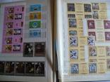 Альбом с марками искусство стран мира MNH(**), фото №6