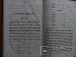 Минералогия 1874 г., фото №10