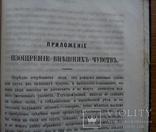 Минералогия 1874 г., фото №12